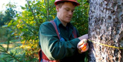 Student Forestry Research Project